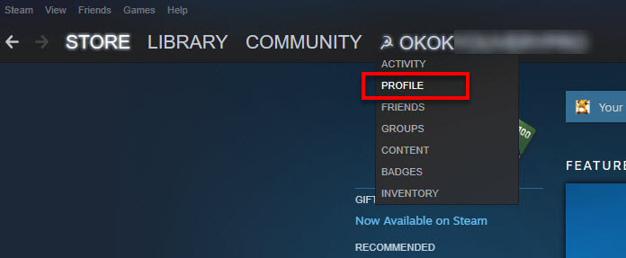 Steam client profile to change Apex Legends username